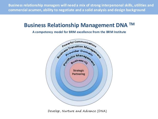 roles and responsibilities of a business relationship manager