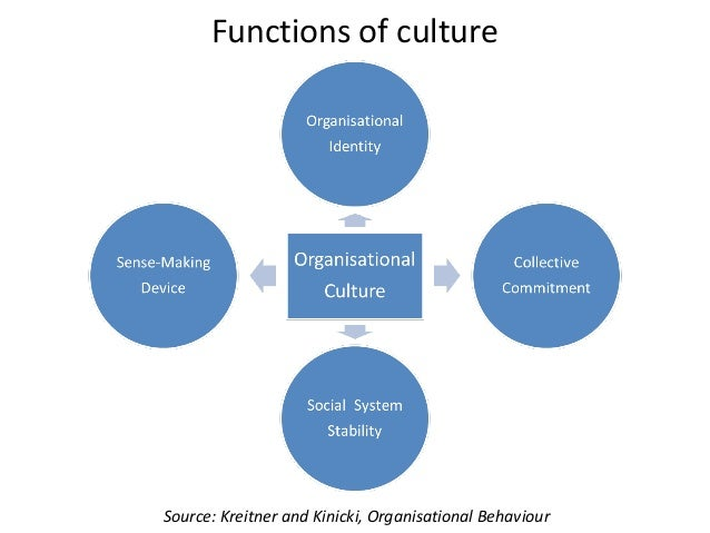 the functions of organizational culture commerce essay Organizations and hr in today's business environment organizations and hr in today's business environment understanding  and hiring and processing functions.