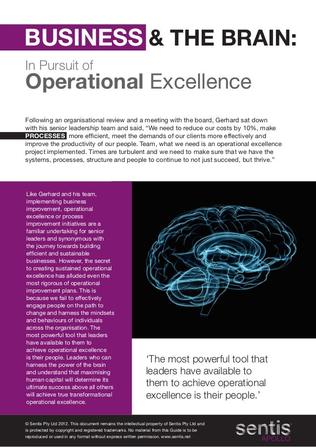 Business & the brain in pursuit of operational excellence