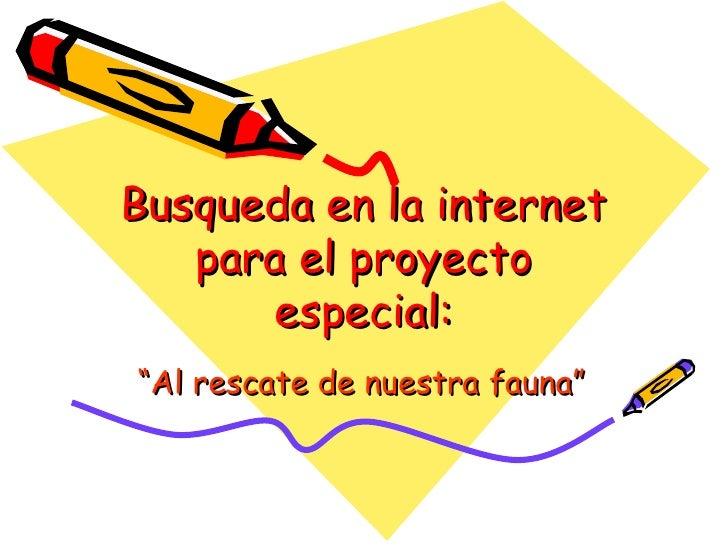 """Busqueda en la internet para el proyecto especial: """" Al rescate de nuestra fauna"""""""