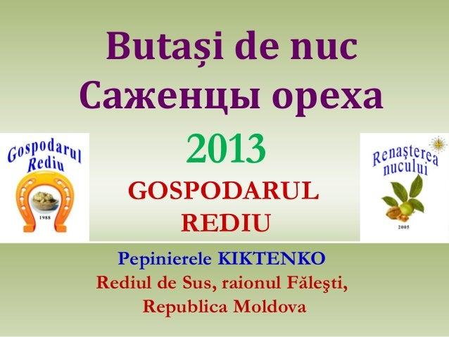 Butași de nuc Саженцы ореха  2013 GOSPODARUL REDIU Pepinierele KIKTENKO Rediul de Sus, raionul Făleşti, Republica Moldova