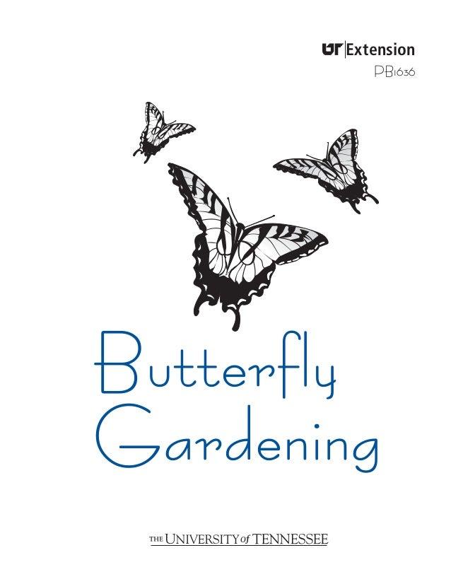 Butterfly Gardening PB1636 Extension