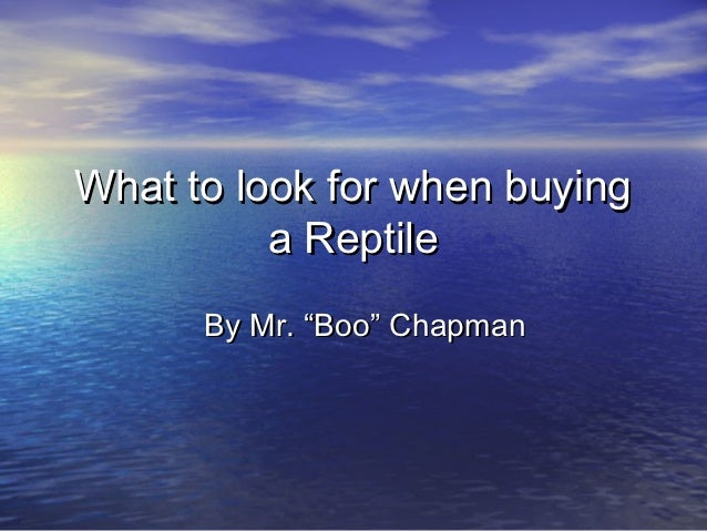 "What to look for when buying          a Reptile      By Mr. ""Boo"" Chapman"