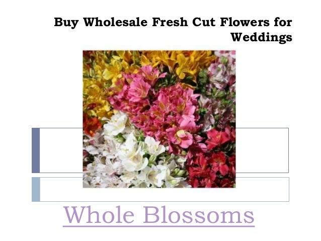 Buy Wholesale Fresh Cut Flowers For Weddings