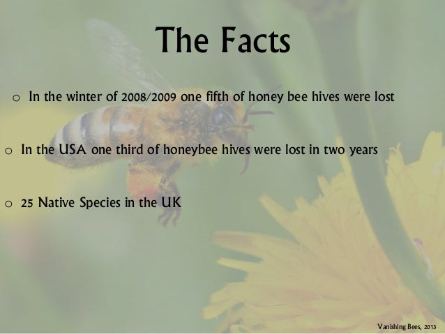 the importance of bees Why is pollination important for native wildflowers cultural importance of pollination visits from bees and other pollinators also result in larger.