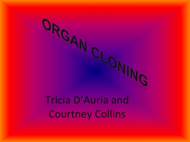 Tricia D'Auria and Courtney Collins