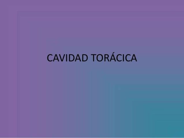 CAVIDAD TORÁCICA