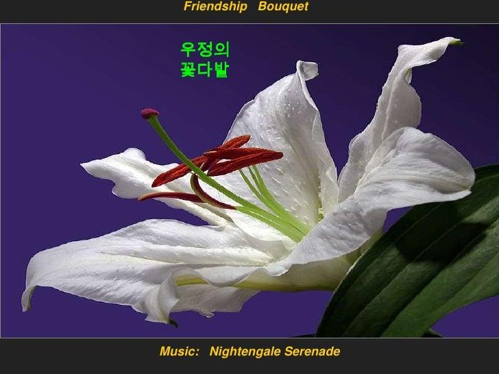 Friendship Bouquet      우정의    꽃다발     Music: Nightengale Serenade