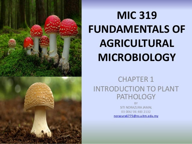 MIC 319 FUNDAMENTALS OF AGRICULTURAL MICROBIOLOGY CHAPTER 1 INTRODUCTION TO PLANT PATHOLOGY BY SITI NORAZURA JAMAL 03 006/...