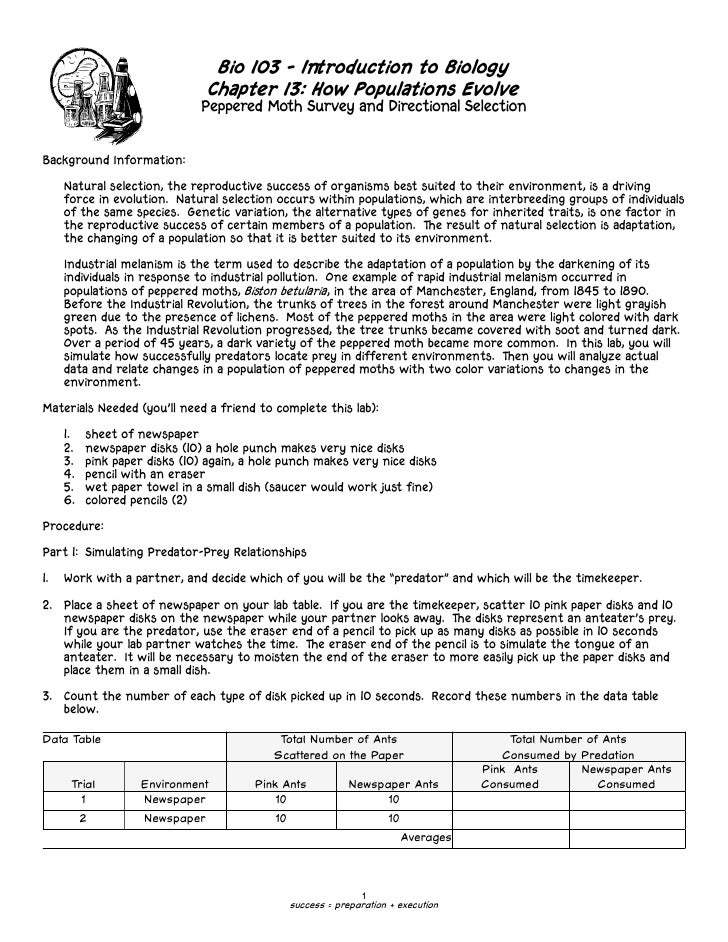 Peppered Moths Natural Selection Worksheet