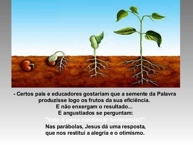 + Após ter semeado, o que nos resta fazer? Ser paciente e perseverar… SEMEAR E SABER ESPERAR… Depois de semeada, a semente...