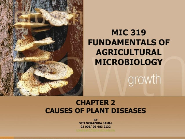 MIC 319 FUNDAMENTALS OF AGRICULTURAL MICROBIOLOGY  CHAPTER 2 CAUSES OF PLANT DISEASES BY SITI NORAZURA JAMAL 03 006/ 06 48...