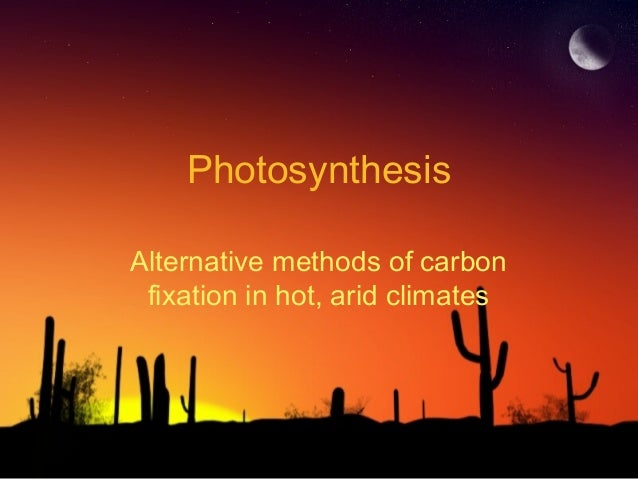 Photosynthesis Alternative methods of carbon fixation in hot, arid climates