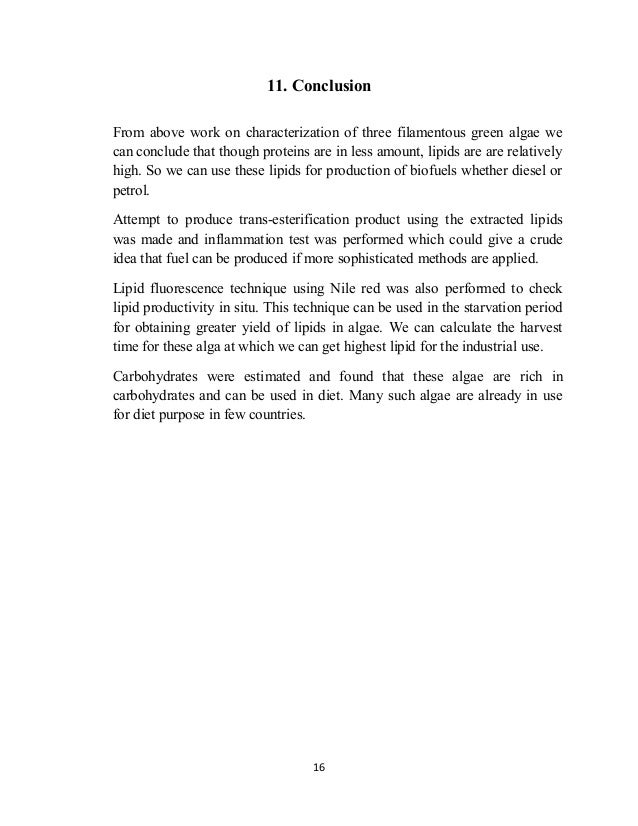 testing macromolecules conclusion