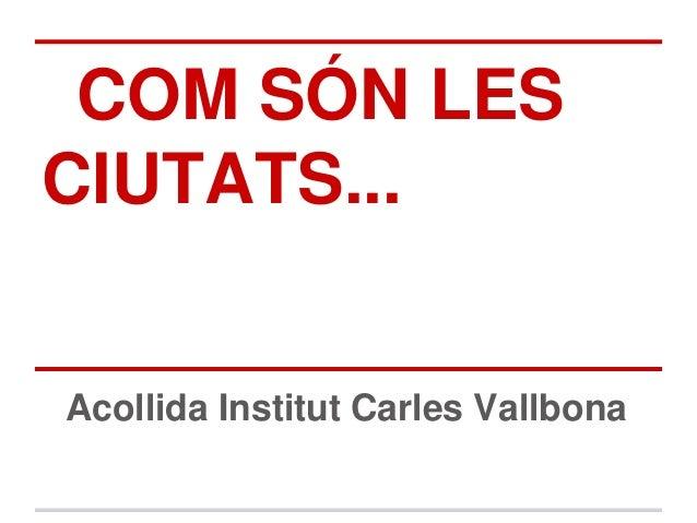 COM SÓN LESCIUTATS...Acollida Institut Carles Vallbona