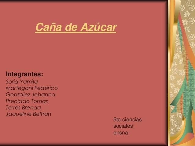 Circuito Productivo De La Caña De Azucar : Caña de azucar