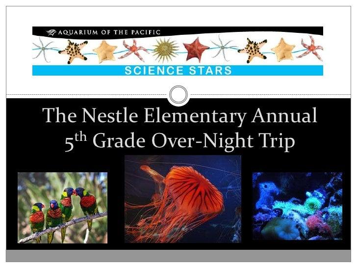 The Nestle Elementary Annual5th Grade Over-Night Trip<br />