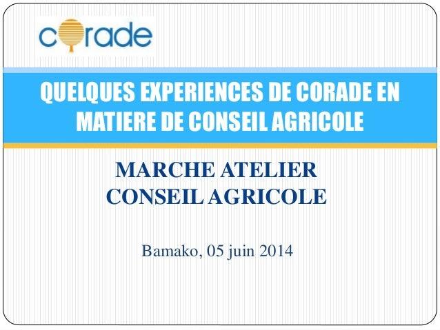 QUELQUES EXPERIENCES DE CORADE EN  MATIERE DE CONSEIL AGRICOLE  MARCHE ATELIER  CONSEIL AGRICOLE  Bamako, 05 juin 2014