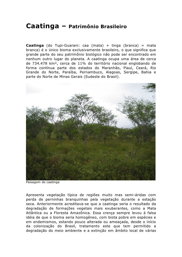 Caatinga –             Patrimônio Brasileiro   Caatinga (do Tupi-Guarani: caa (mata) + tinga (branca) = mata branca) é o ú...