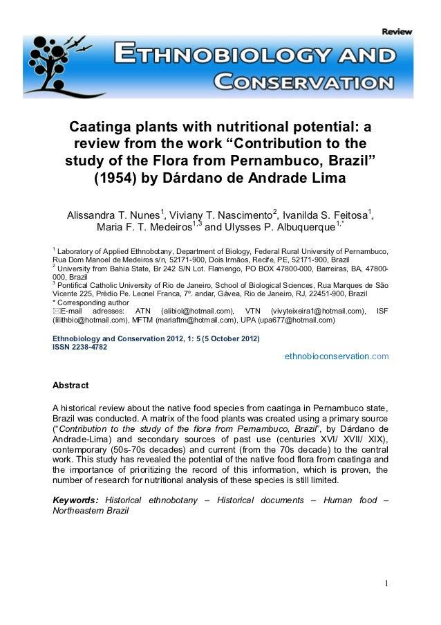 Caatinga plants   dárdano