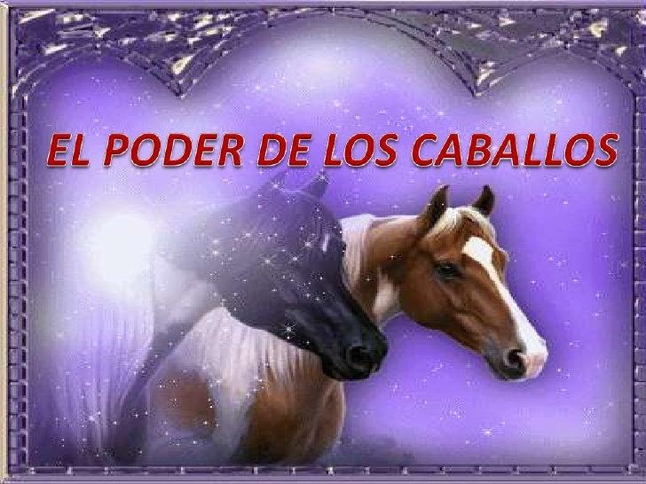 Usar el poder de los caballos para    sanar la mente y el cuerpoSíndrome de Down, autismo, distrofiamuscular, traumas cere...
