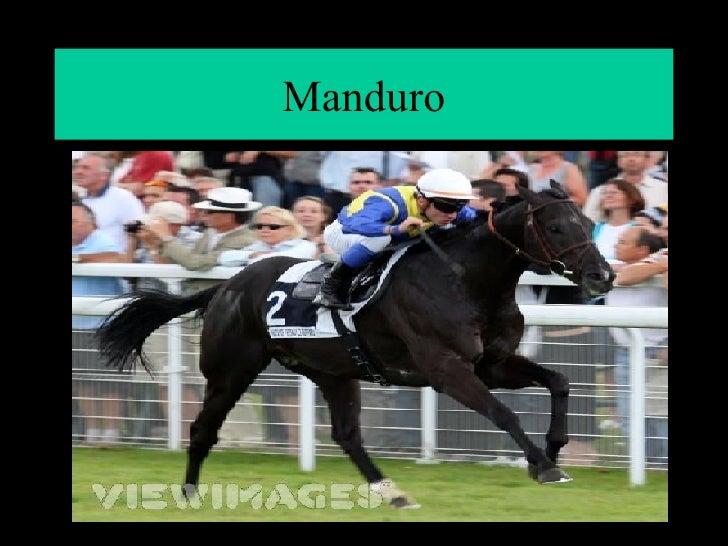Manduro