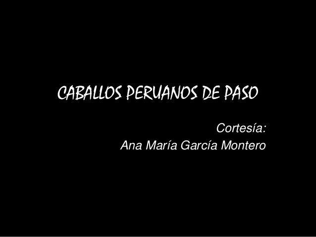CABALLOS PERUANOS DE PASO Cortesía: Ana María García Montero