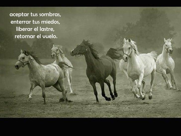 poemas de caballos