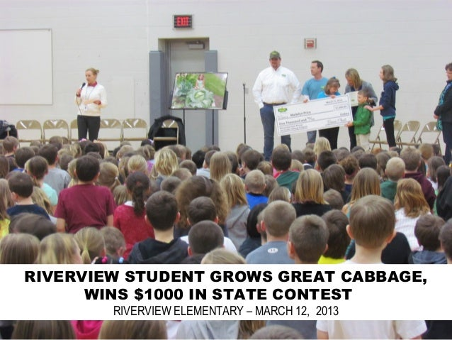 RIVERVIEW STUDENT GROWS GREAT CABBAGE,      WINS $1000 IN STATE CONTEST        RIVERVIEW ELEMENTARY – MARCH 12, 2013