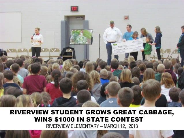 Riverview Celebrates Cabbage Success