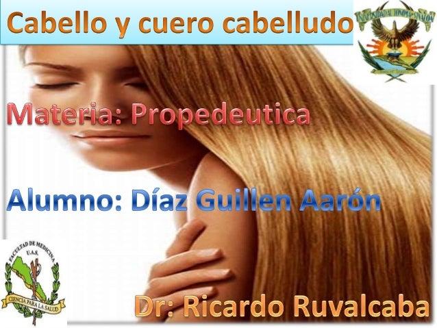 Modulo Belleza Y Cosmetologia 10 Upload Share | Auto ... - photo#37