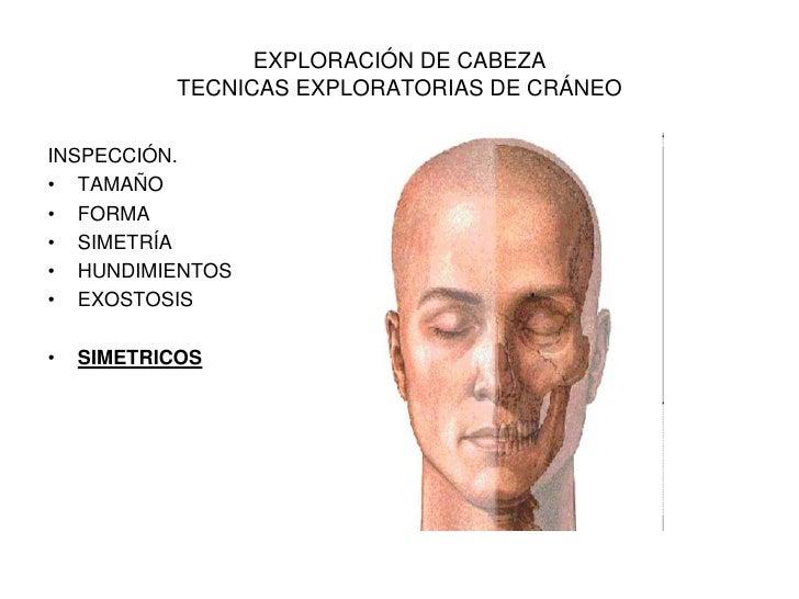 Todo sobre las enfermedades de la columna vertebral y el tratamiento