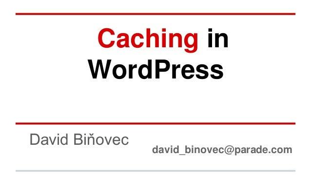 Caching in WordPress