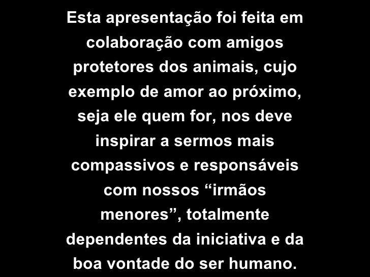 Esta apresentação foi feita em colaboração com amigos protetores dos animais, cujo exemplo de amor ao próximo, seja ele qu...