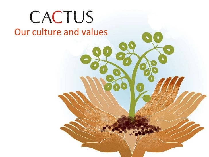 Our culture and values