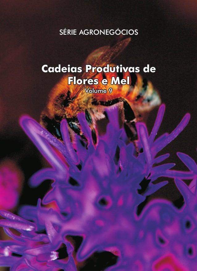 SÉRIE AGRONEGÓCIOS  Cadeias Produtivas de Flores e Mel Volume 9