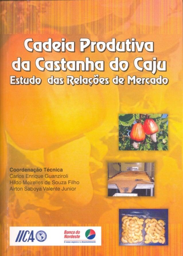 Cadeia produtiva da Castanha do Cajú estudo das relações de mercado