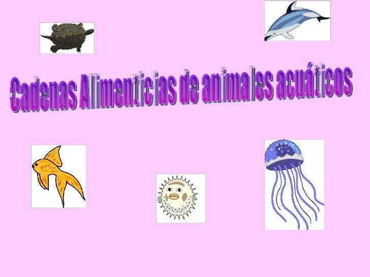 Cadenas Alimenticias de animales acuáticos