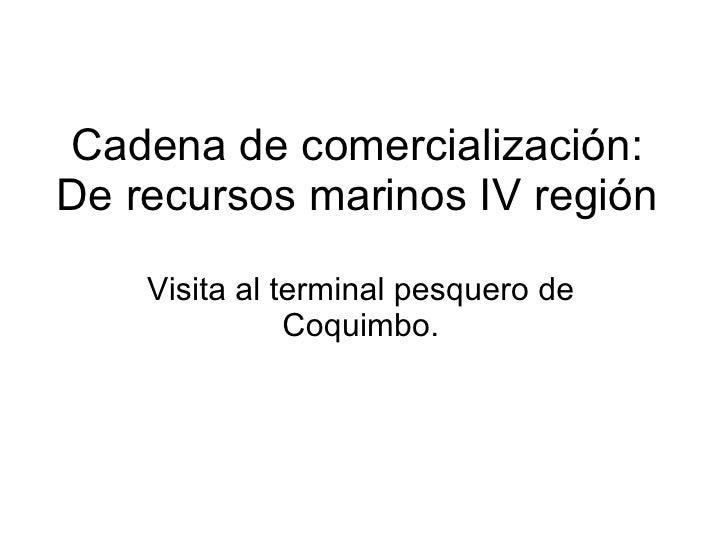 Cadena de comercialización: De recursos marinos  IV región   Visita al terminal pesquero de Coquimbo.