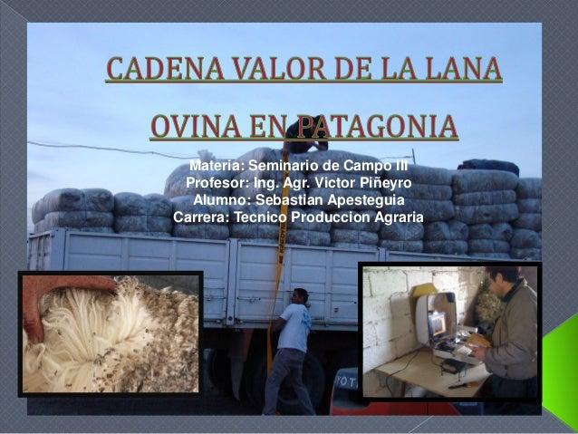 Materia: Seminario de Campo III Profesor: Ing. Agr. Victor Piñeyro Alumno: Sebastian Apesteguia Carrera: Tecnico Produccio...
