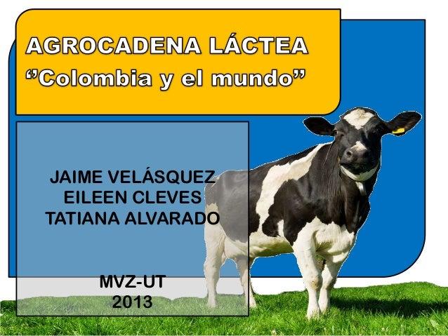 JAIME VELÁSQUEZ EILEEN CLEVES TATIANA ALVARADO MVZ-UT 2013