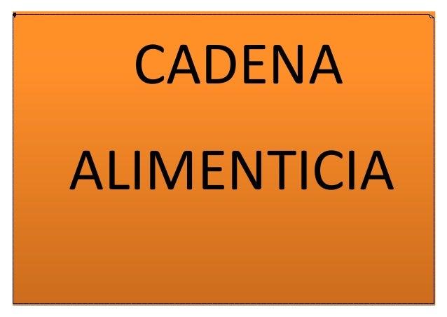 #CADENAS ALIMENTICIAS