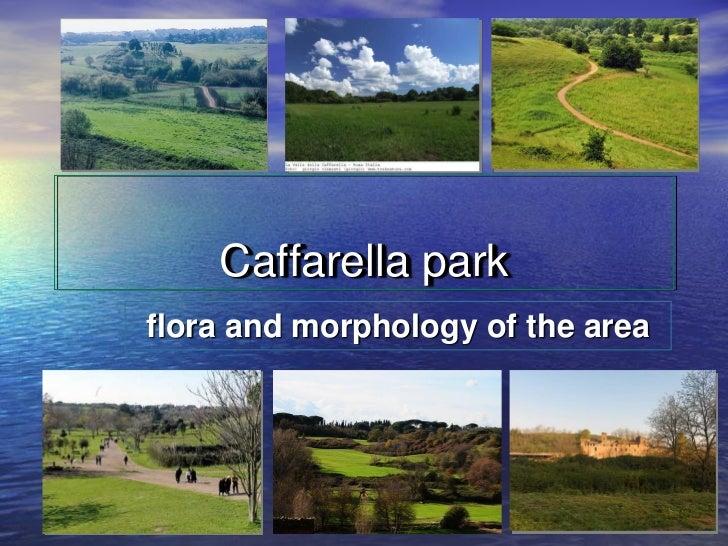 Caffarella parkflora and morphology of the area