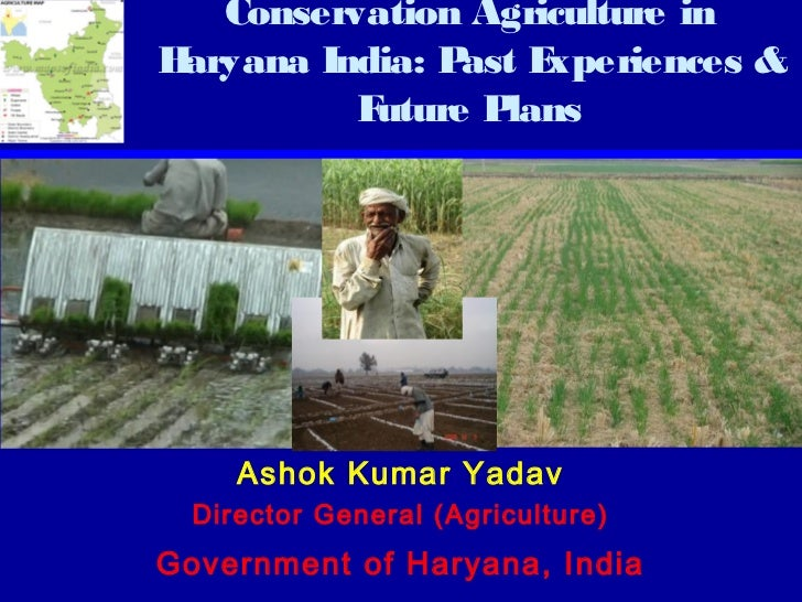 Conservation Agriculture inHaryana India: P E                ast xperiences &          Future Plans     Ashok Kumar Yadav ...