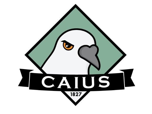 Caius - Graduate Opportunities & Summer Internships at Redington