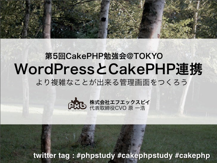 Cakephp And Wordpress