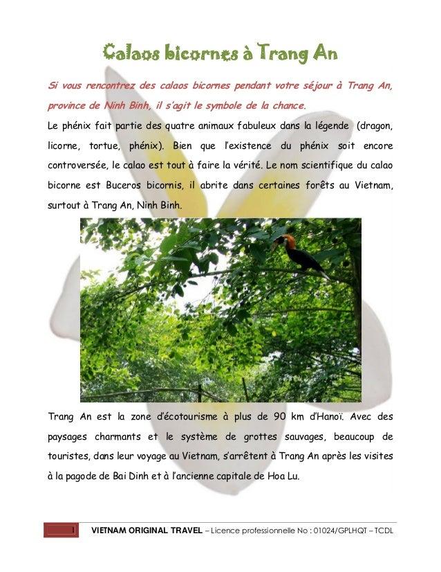 1 VIETNAM ORIGINAL TRAVEL – Licence professionnelle No : 01024/GPLHQT – TCDL Calaos bicornes à Trang An Si vous rencontrez...