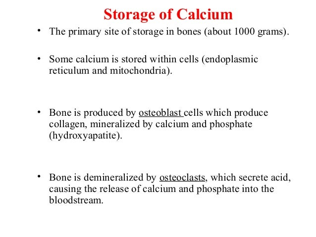 calcium storage release and recycling