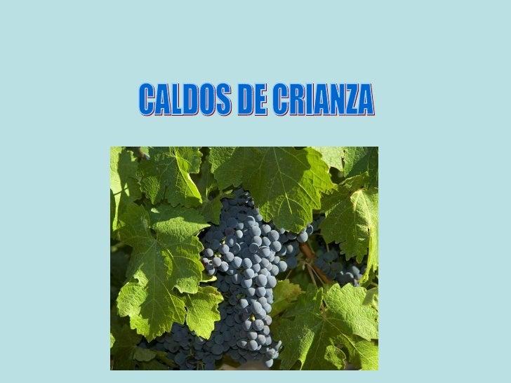 CALDOS DE CRIANZA