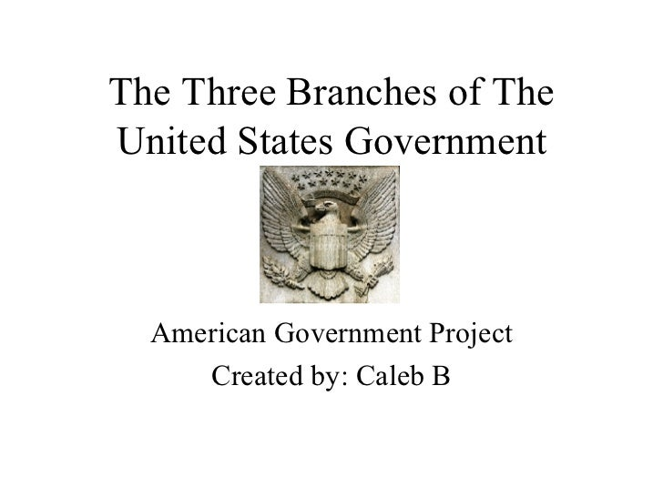 The Three Branches of The United States Government American Government Project Created by: Caleb B